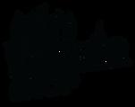FMS-Logo_noir-01.png