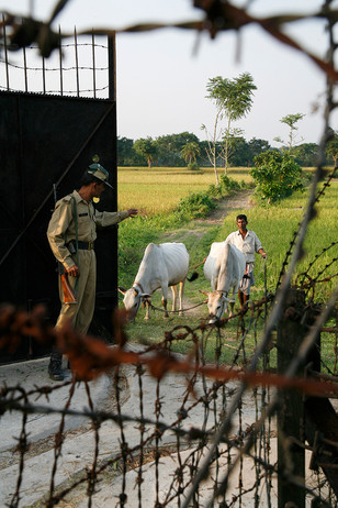 INDIA FENCE_11.JPG