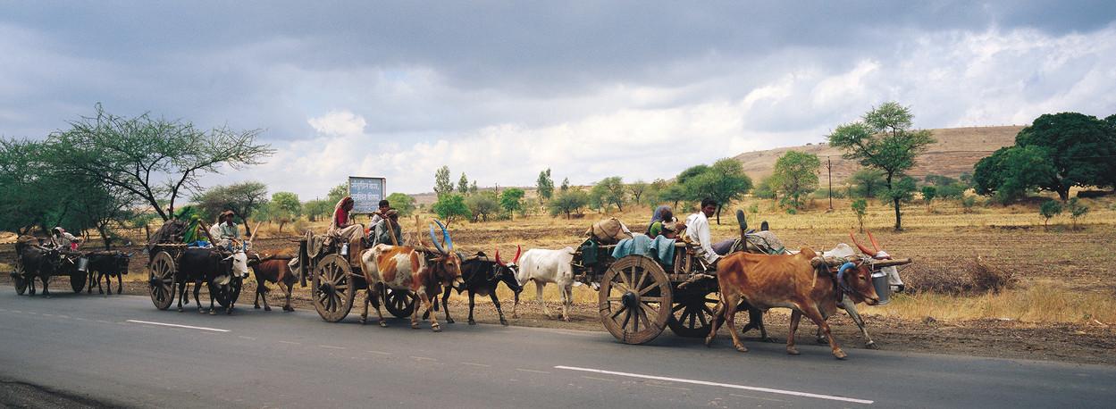 Ahmednagar - Auramngabad road, Maharashtra, 2006: A group of returning migrant sugarcane workers on the highway.