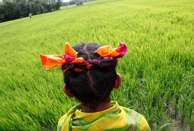 A girl at a reduced-tillage, dry-seeded rice field (using Power Tiller Operated Seeder, PTOS) at Mominpur village, Bangladesh, 2009.