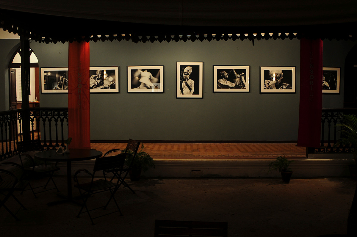 Installation view of 'Jazz' by Farrokh Chothia