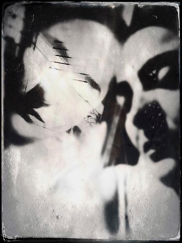 """""""Chimera"""" by Rehma Pritam Singh"""
