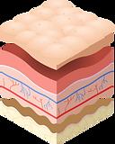 skin blocks landing page.png