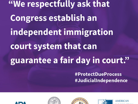An Article I #immigration court is needed
