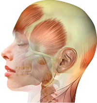 Affinity Family Wellness TMJ Massage Therapy Kelowna Direct Billing