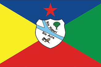 Bandeira de Xapuri