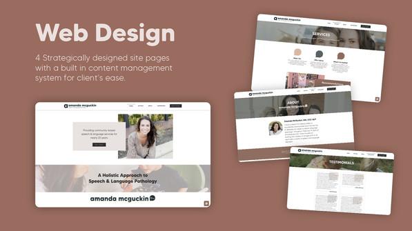 amslp-3-portfoliopiece.jpg
