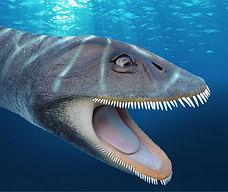 plesiosaurus head.jpg