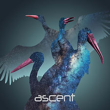 ascent cover.jpg