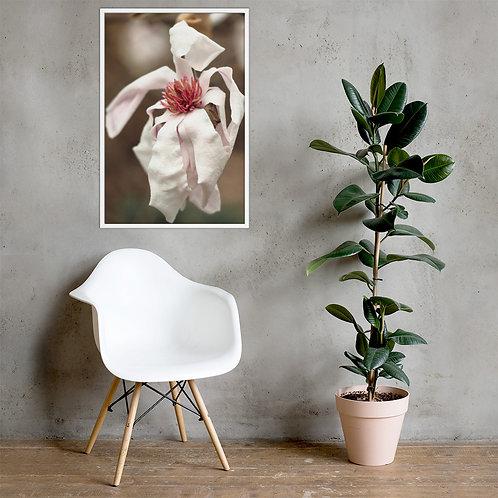 'Pink Parchment' Magnolia Framed