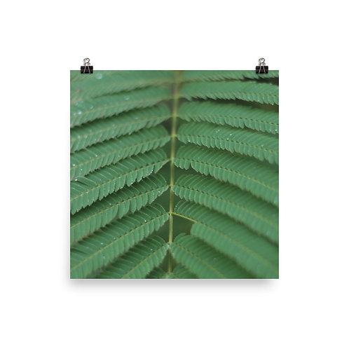 Green Plants Print