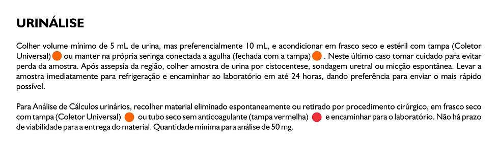 urinálise.jpg