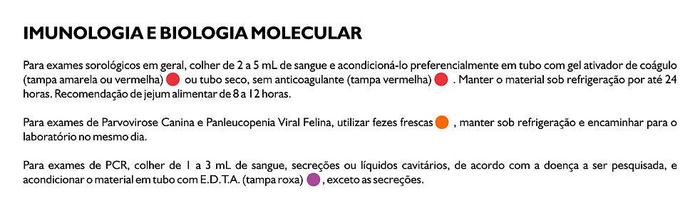 imunologia e biologia molecular.jpg