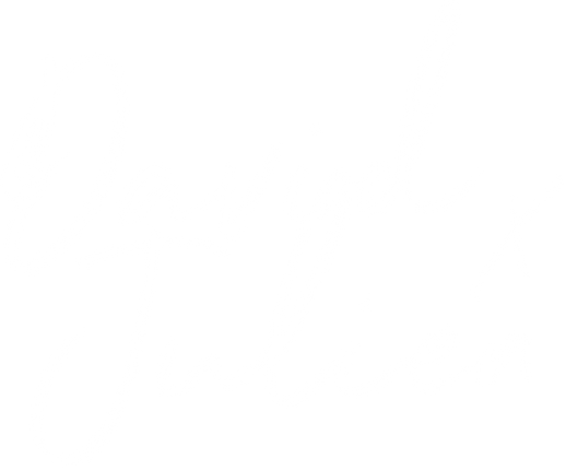 dj-logo-white.png