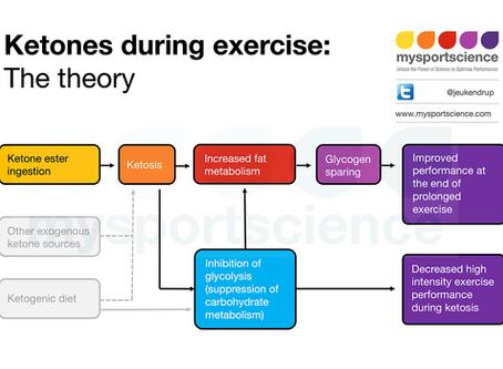 Do ketone esters spare glycogen and improve performance?
