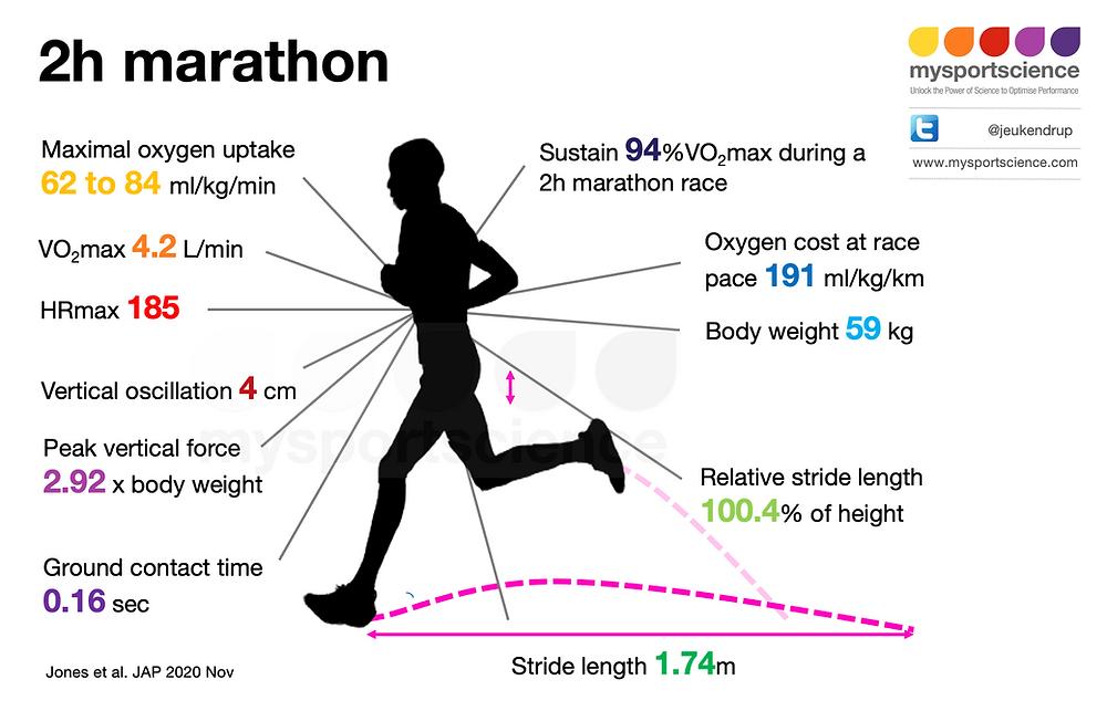 2h marathon physiology
