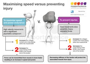 Maximising speed versus preventing injury