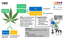 Cannabidiol (CBD): Claims, risks and unanswered questions