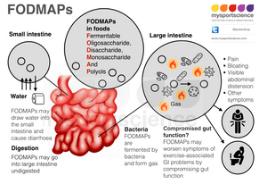 FODMAPs and GI problems