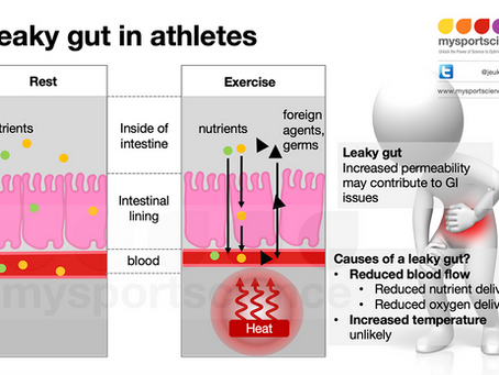 What causes an athlete's leaky gut?