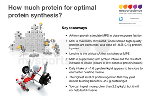 Protein intake for optimal protein synthesis. Key takeaways