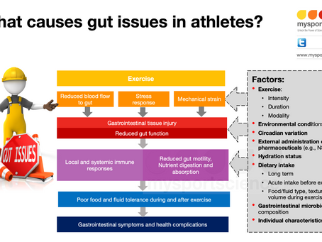What causes gut issues during and after exercise?