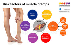 What causes muscle cramps in exercise?