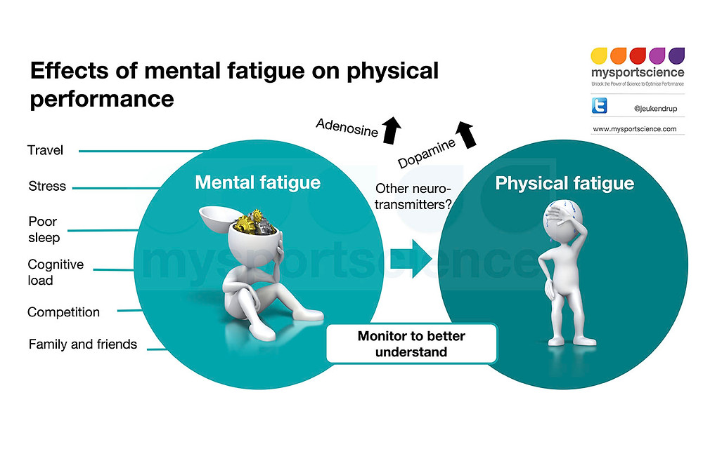 Mental fatigue and physical performance