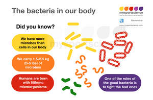 The bacteria in our body - role of the micro biome