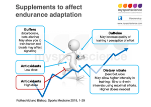 Supplements and training adaptation