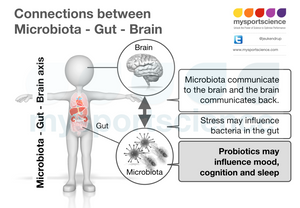 A gut feeling about probiotics