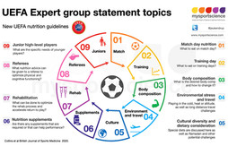 UEFA expert group statement on nutrition