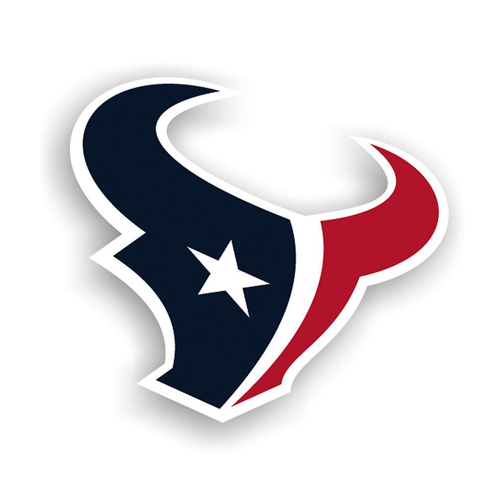 """Houston Texans 12"""" vinyl helmet magnets"""