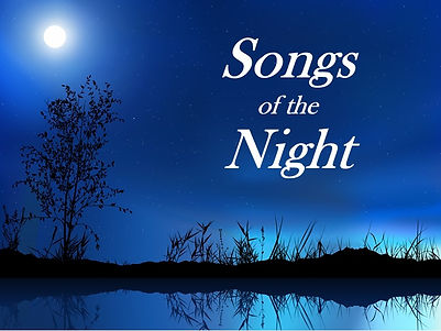 Night songs webpage pic.jpg