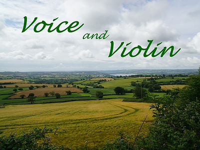 Voice and Violin picture.jpg
