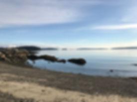 Salt Spring shoreline.jpg