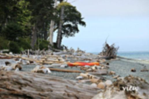 Malcolm-Island.jpg