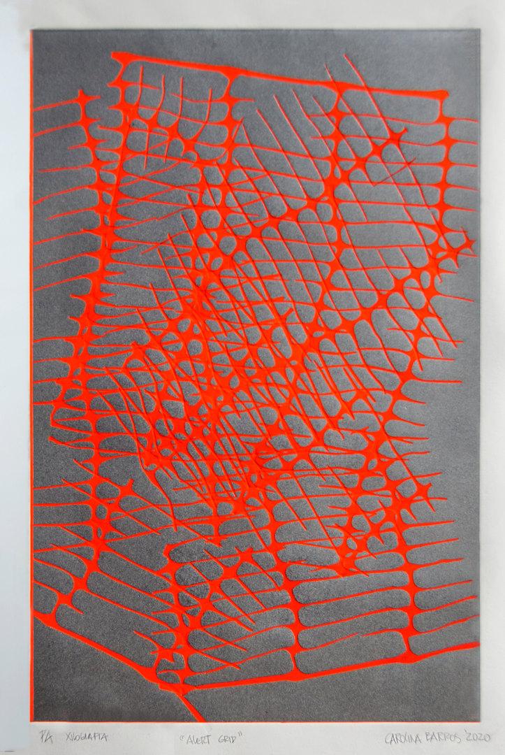 Carolina Barros, Alert Grid, 2020.
