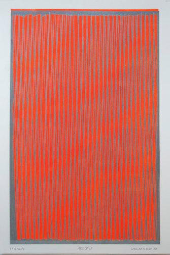 Carolina Barros, Serie Optica Plata Color, 2020.