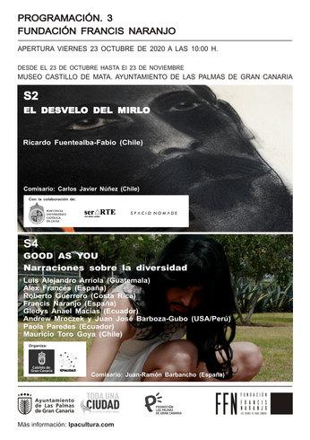 Invitación evento Exposición, El desvelo del mirlo de Ricardo Fuentealba-Fabio © 2020