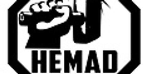 HEMAD Facilitator Training