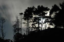 Moonlight - Ohariu, Wellington
