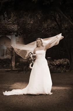 Wedding - Wellington