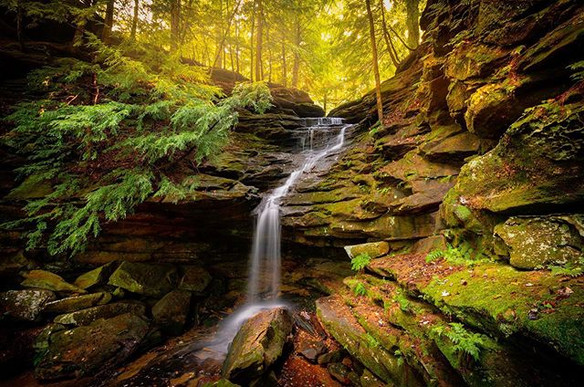 Took a morning hike to Mohican State Par