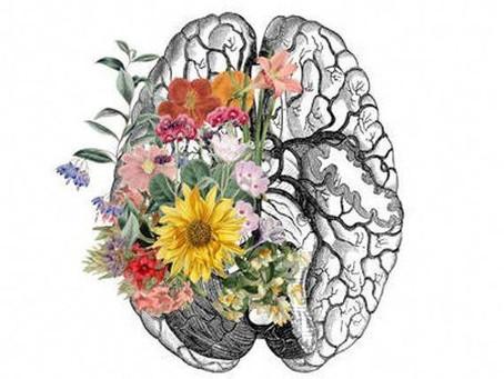 Ruminating Versus Overthinking