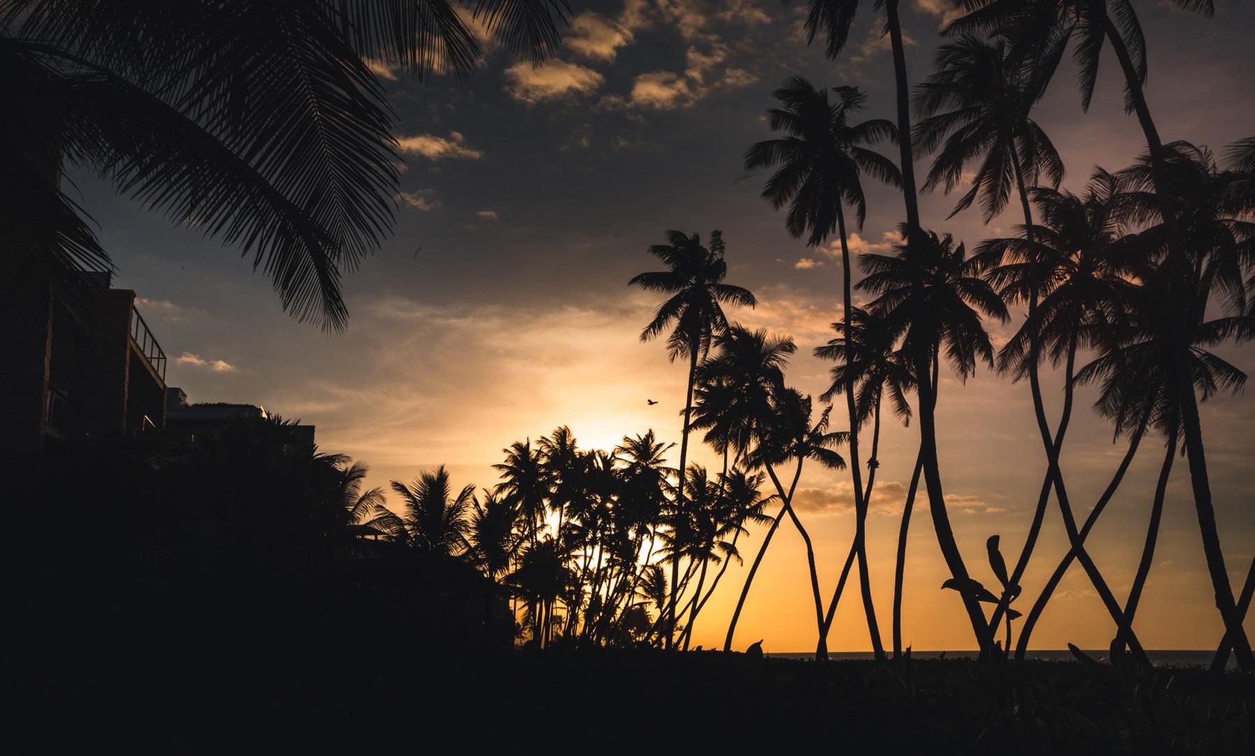 West Beach - Sunset View