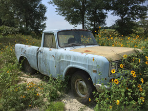 The old truck in the Texas pasture.