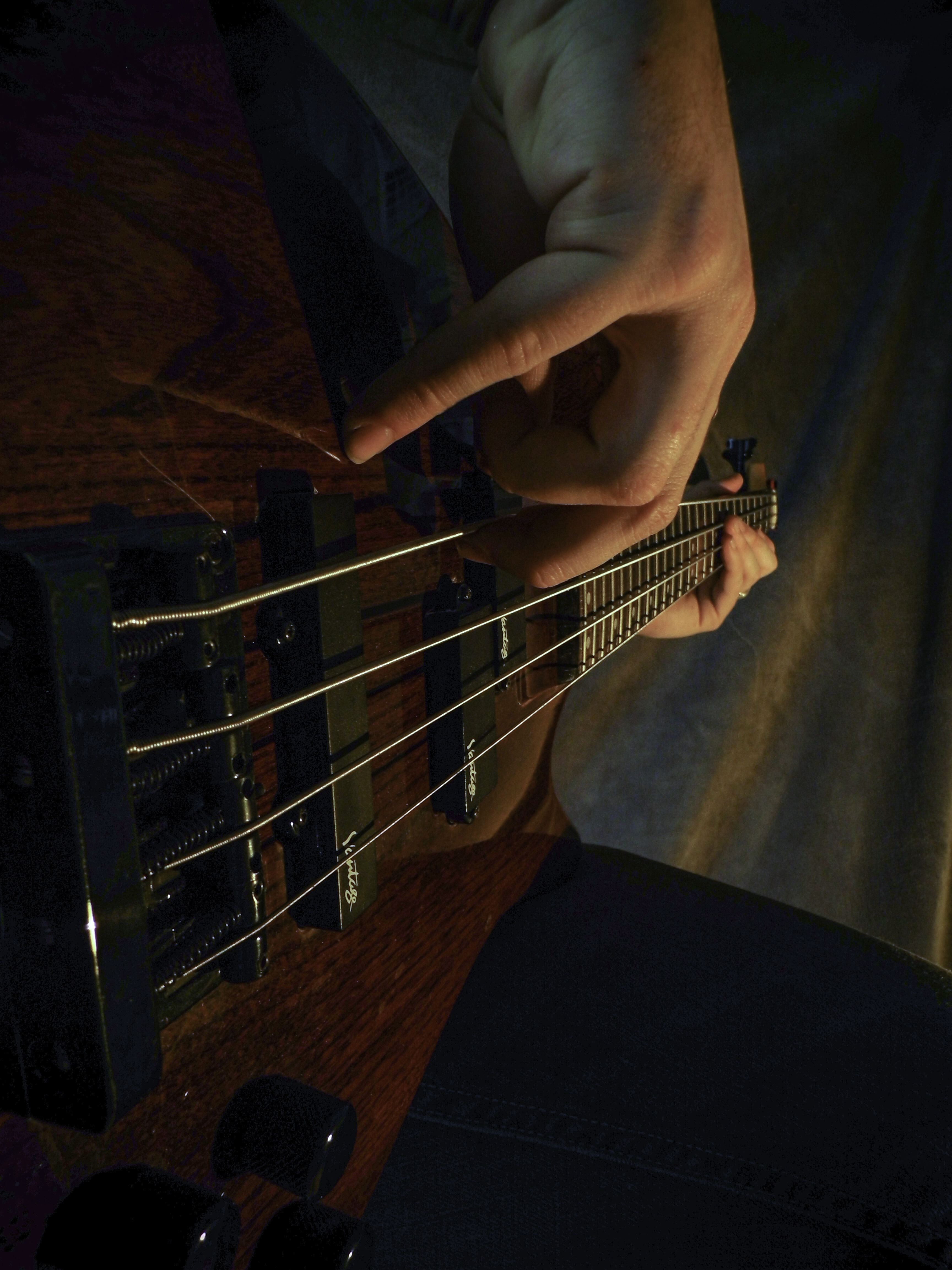 Fixated Bass