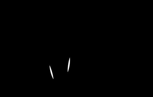 ellie-logo-01png