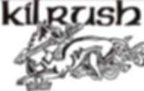 Keltoi logo